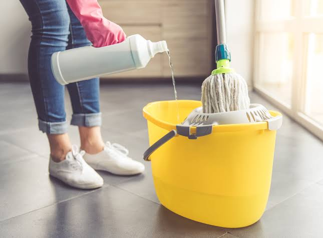 Importance of professional cleaners in daily life